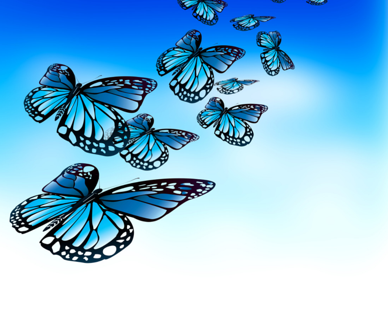 The Business Butterfly